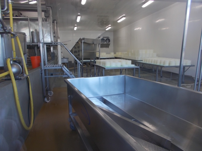 Photo of cheese production room at Point Reyes Farmstead