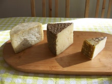Spanish Sheep Milk Cheese