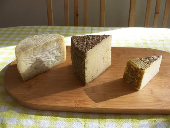 Photo of Three Manchego cheeses